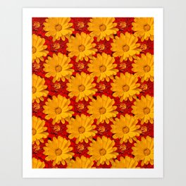 A Medley of Red and Yellow Marigolds Art Print
