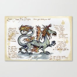 Lesser Chinese Fire Dragon Canvas Print