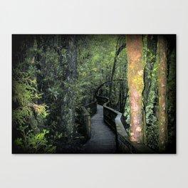 Franklin - Gordon  National Parks Canvas Print