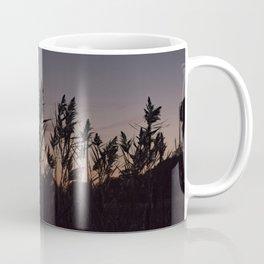 Phragmites silhouette at sunset Coffee Mug