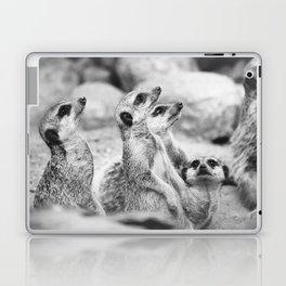 Black and White Meerkats Laptop & iPad Skin