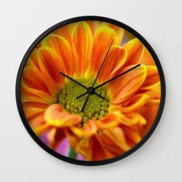 Aster 105 Wall Clock