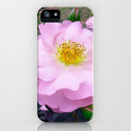 Funky Rose baby pink & yellow iPhone Case