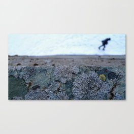 Glacier Museum, Fjærland Canvas Print