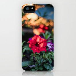 Still blooming in the evening iPhone Case