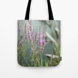 Lakeside Colors Tote Bag