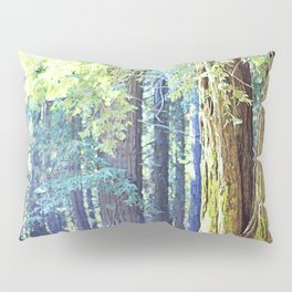 Picnic in the Woods Pillow Sham