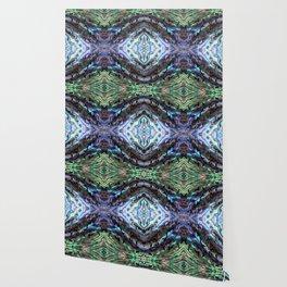 Abalone Wallpaper