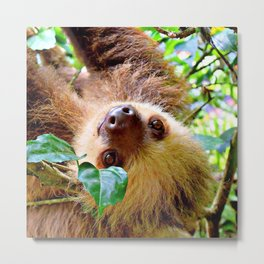 Awesome Sloth Metal Print