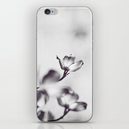 Black and White Floral Dogwood Photography, Grey Spring Flower Tree Branches, Gray Neutral Nature iPhone Skin