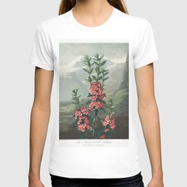 The Narrow-Leaved Kalmia from The Temple of Flora (1807) by Robert John Thornton T-shirt