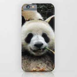 Friends are for Chillin' iPhone Case