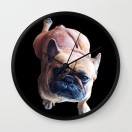 Cute French Bulldog Kneel for a Cookie! Wall Clock