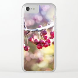 Jewels Clear iPhone Case