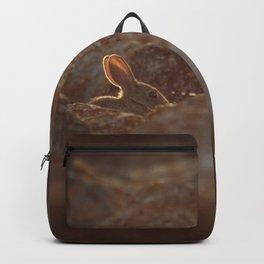 Honey bunny Backpack