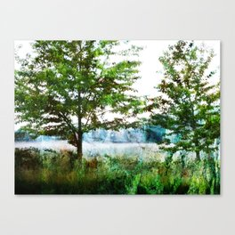 tinted meadow Canvas Print