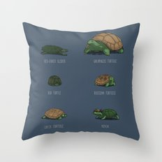 Know Your Turtles Throw Pillow