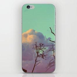 223 | bastrop state park iPhone Skin