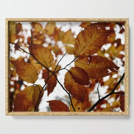 Beech Leaves Serving Tray