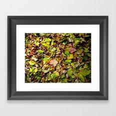 Underfoot Framed Art Print