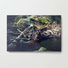 Rusted River Metal Print