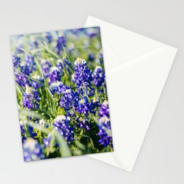 Texas Spring Stationery Cards