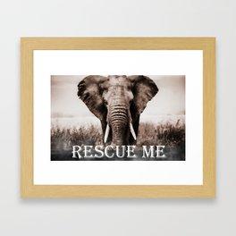 Elephant Rescue Framed Art Print