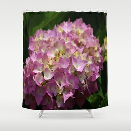Pink Hortensia Shower Curtain