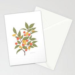 Berry Branch // Floral Pattern // Botanical Illustration // Coral Stationery Cards