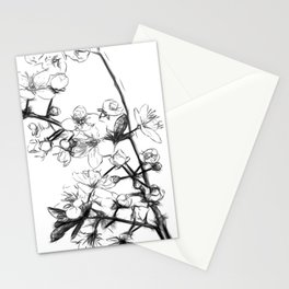 Cherry Blossoms Minimal Drawing Stationery Cards