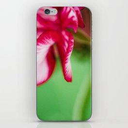 Geranium 4 iPhone Skin
