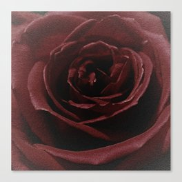 Textured Red Rose Canvas Print