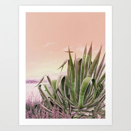 Agave in the Garden on Pastel Coral Art Print