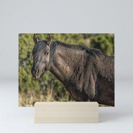 Garcia No. 2-Pryor Mustangs Mini Art Print