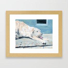 Stretching Cream Labradoodle Framed Art Print