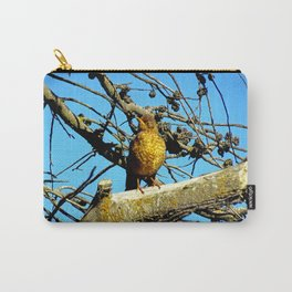 Falkland Island Thrush Carry-All Pouch