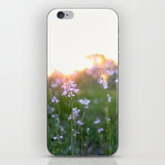 Sunset in Spring iPhone & iPod Skin