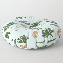 pismo beach Floor Pillow