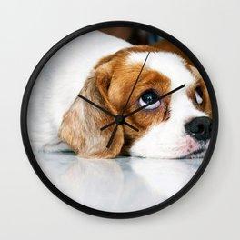CoCo 狗狗 Wall Clock