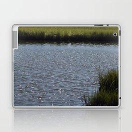 Natures Treasure New Jersey Marshland Addition Laptop & iPad Skin