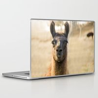 llama Laptop & iPad Skins featuring LLAMA by Julie Zhang