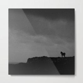 Lonely Horse (Inishmore, Ireland) Metal Print