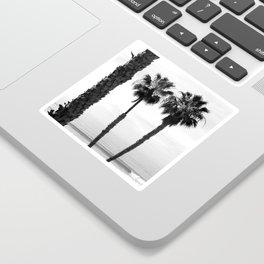 Palm Tree Noir #59 Sticker