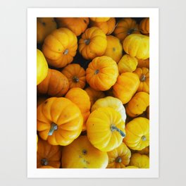 Pumpkin Minis Art Print