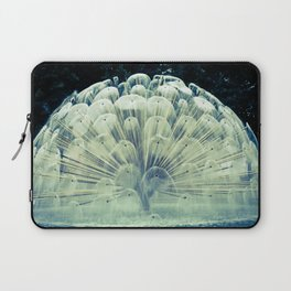 Fountain in Oslo Laptop Sleeve