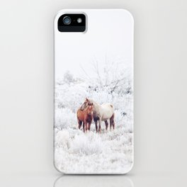 Two Winter Horses iPhone Case