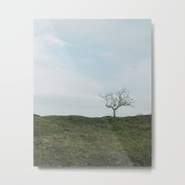 Just one tree on a green hill in a blue sky, fine art travel photography print Metal Print