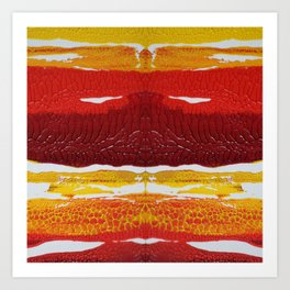 The Sun Bandit Art Print