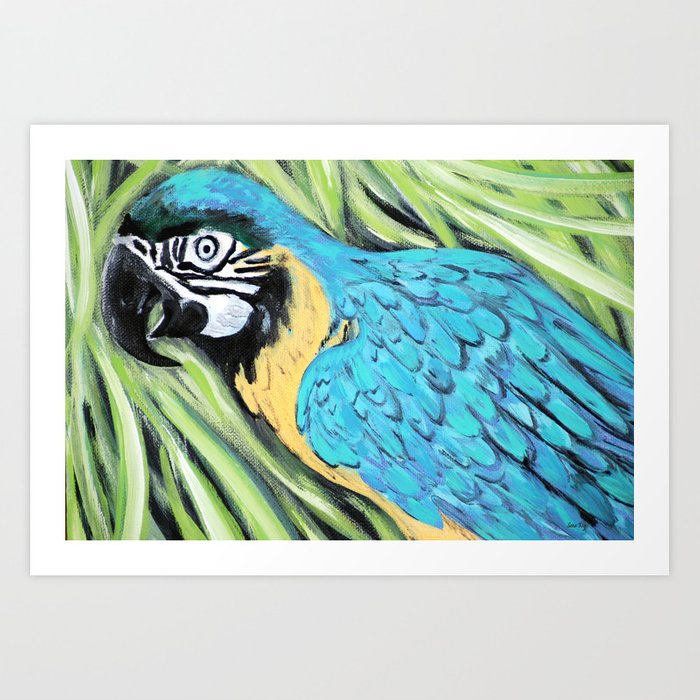 Blue and Yellow Macaw. Painting Art Print