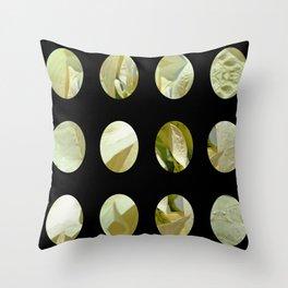 Pale Yellow Poinsettia 1 Art Circles 2 Throw Pillow